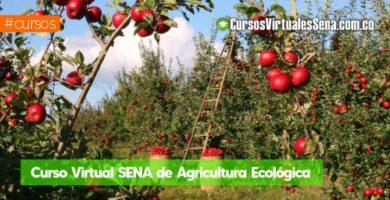 curso de agricultura virtual gratis
