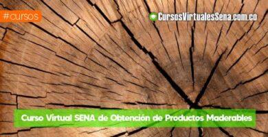 curso de madera gratis online
