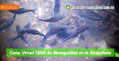 acuicultura sena gratis