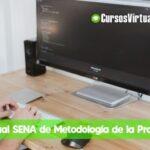 curso de metodologia de programacion online