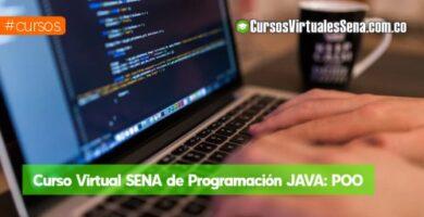 curso de programacion sena virtual