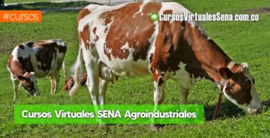 cursos de agroindustria sena